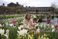 Así es el Jardín Blanco que recuerda la memoria de Diana de Gales