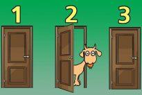 El dilema de Monty Hall: ВїSon más listas las palomas que los seres humanos?