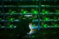 Retiran más de 120.000 euros en bitcoins de las cuentas virtuales de WannaCry procedentes del pago de rescates