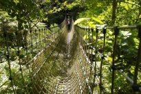 Lo que esconden los «Jardines Perdidos de Heligan»