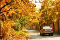 Las recomendaciones que debes seguir para que conducir en otoño sea más seguro
