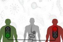 Demostrada la utilidad del trasplante fecal para prevenir la diabetes en personas obesas