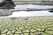 El último decenio arroja los veranos más secos de los tres siglos anteriores