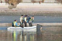 El Ayuntamiento usa descargas eléctricas para aniquilar a los 14.000 peces del lago de la Casa de Campo