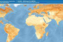 Un detallado mapa muestra la cantidad de reservas de carbono del suelo en el mundo