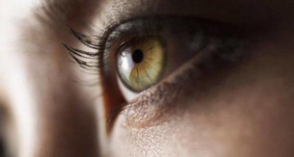 Inteligencia Artificial para curar problemas oculares