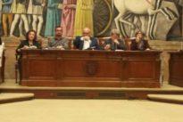 Tauroejea y Circuitos Taurinos ganan el concurso de la plaza de toros de Zaragoza por sorteo