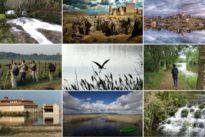 Diez paraísos de España donde ver el despertar de la primavera