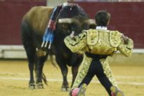 La adjudicación de la plaza de toros de Zaragoza, paralizada por dos recursos ante el Tribunal de Contratos Públicos
