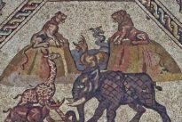 Así ponen a salvo los arqueólogos un mosaico hallado en Israel