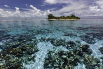 El cambio radical que ha experimentado la Barrera del Arrecife de Belice en solo 18 meses