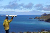 El uso de drones para la investigación de la vida silvestre: sus efectos y las lagunas legales