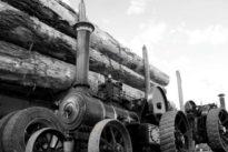 Del coche diésel al eléctrico: un proceso similar a la revolución industrial del siglo XIX