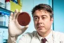 ¿Sabes que la bacteria más mortal reside en nuestra piel?