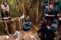 La leona Ginni, la esperanza de la subespecie asiática amenazada de extinción
