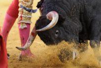 Los mejores planes taurinos de esta primavera: corridas de las ferias de Abril y San Isidro