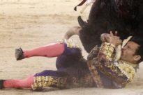 Espeluznante cogida del novillero Cristian Pérez, que da una vuelta al ruedo en Las Ventas