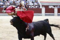 Pablo Aguado, herido de gravedad en Las Ventas: «Si Dios quiere, estaré en Granada»