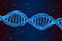 Descubierta una nueva causa génetica de infertilidad