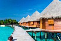 Un hotel de las Maldivas ofrece dos semanas con todos los gastos pagados a cambio de cuidar tortugas
