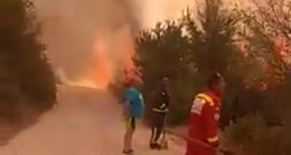 Estabilizado el fuego declarado en Trescasas (Segovia)