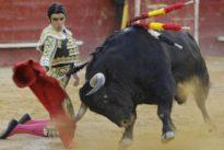 Feria de Julio de Valencia: vuelta al ruedo al sobrero «Holgado», de Algarra