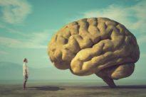 Efecto Ganzfeld: ¿se puede «hackear» el cerebro para crear alucinaciones sin drogas?