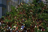 La absurda historia sobre La Rama en Canarias: no es una fiesta prehispánica