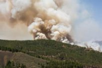 Canarias, desbordada por incendio intencionado