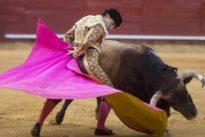 La tarde que Pablo Aguado hizo un monumento a la tauromaquia