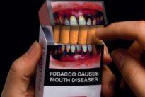 ¿Cuánto tabaco puedo traer desde Canarias?