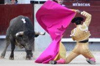 Muy bravos «Chirón» y Serrano en Las Ventas