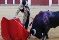Vientos de rareza en el duelo del arte entre Morante y Aguado