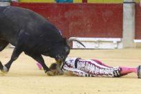 Escalofriante parte médico de Mariano de la Viña: el toro le arrancó la femoral y entró en situación cataclísmica