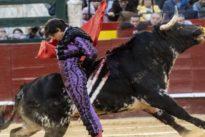 Roca Rey comenzará su temporada española en la Feria de Fallas